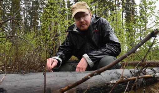 Jarmo Uimonen sitter på huk och inspekterar en brandskadad trädstam på marken.