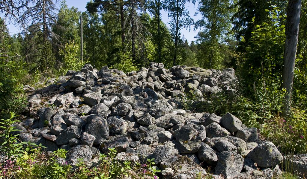 En fornlämning är inget hinder för skogsvård