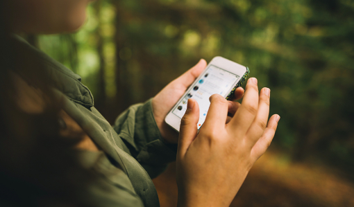 Skogsreportern twittrar och bloggar för unga läsare