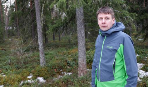 Behov för kalkyler i skogsbruket