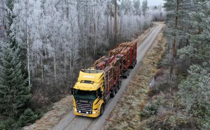 Skogsvägen i skick utan dröjsmål