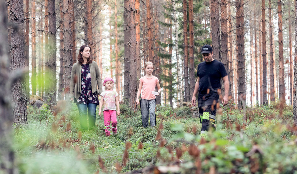De unga tog över släktens skogsbruk
