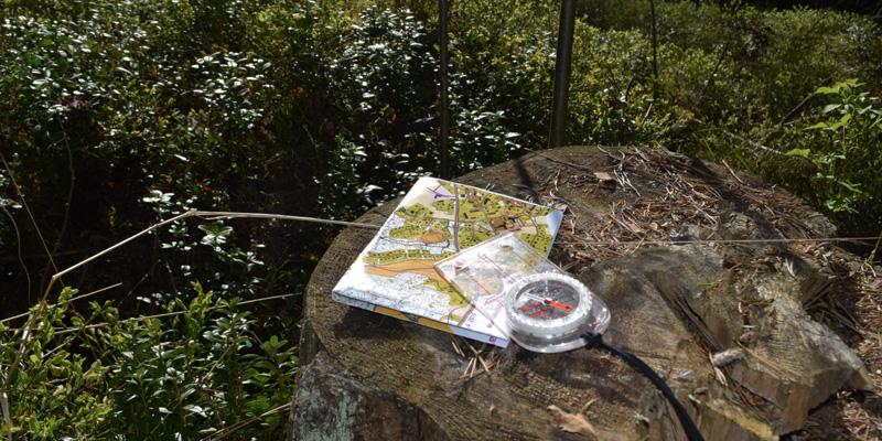 En karta och kompass på en stubbe i skogen.