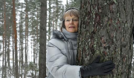 Samfälld skog – ett lätt sätt att äga