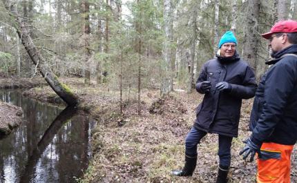 I kyrkoherdens skog finns det rum för biologisk mångfald