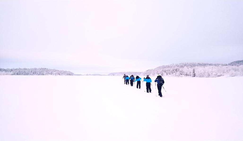En grupp skidåkare på isen i Lappland.