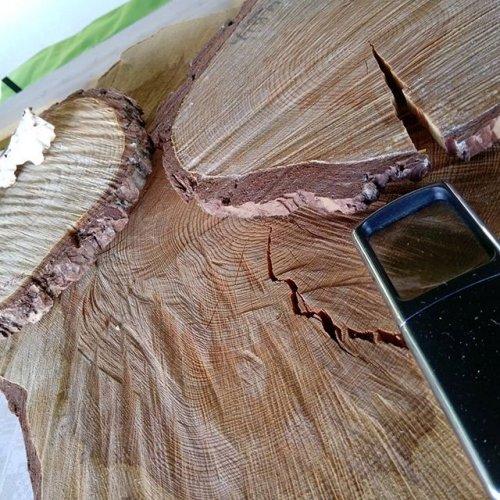 @metsakeskus: Metsäkeskuksen osastolla Okrassa saat tietoa myös metsätuhoista, kuten esimerkiksi juurikäävästä. Lisäksi tietoa on tarjolla Metsään.fi-palvelusta, tieasioista ja omistajanvaihdoksista. Tervetuloa kysymään ja keskustelemaan! Okra on auki vielä tänään ja huomenna klo 9-17. Metsäkeskuksen osasto on portin 5 läheisyydessä, paikalla E299. #okra #okra2019