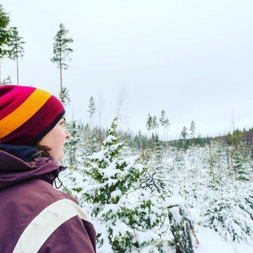 @metsakeskus: Metsäkeskukseen on tulossa useita mielenkiintoisia tehtäviä vuoden 2020 harjoittelupaikkahakuun. Harjoittelupaikkoja on ympäri Suomen ja ne avataan tammikuun toisella viikolla. Paikkoja kannattaa hakea heti, sillä hakemuksia käydään läpi jo haun aikana. Tiedot harjoittelupaikoista julkaistaan verkossa www.metsakeskus.fi/avoimet-tyopaikat. Lisätietoa harjoittelusta Metsäkeskuksessa ja aiemmin harjoittelussa olleiden tarinoita: www.metsakeskus.fi/harjoittelu-ja-kesatyopaikat. #harjoittelu