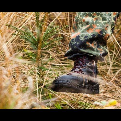 Tukevat kengät jalkaan ja heinäntorjuntaan! 🍁☀️🌲  Syksy on otollista aikaa taimikonpelastustyölle, sillä vihreät taime...