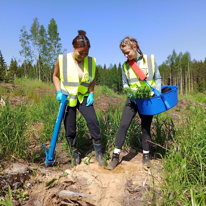 Två ungdomar trampar jorden runt en planta som de precis planterat.