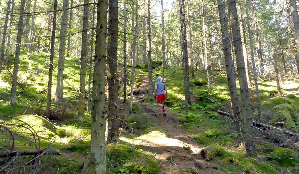 2.Saara Grönholm fotograferad bakifrån när hon springer längs stigen uppför en backe.
